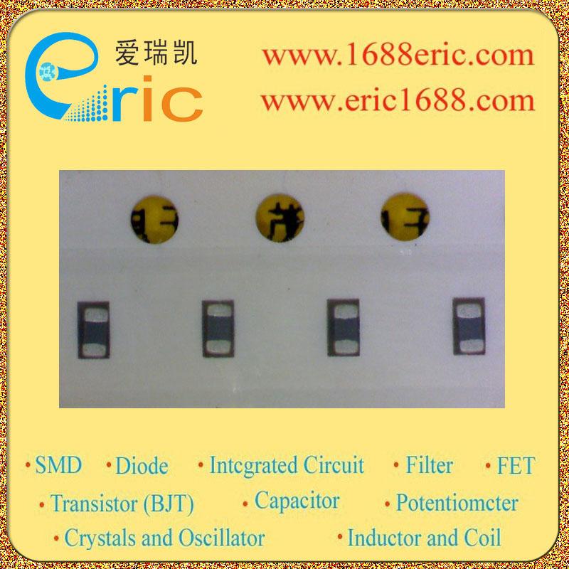 BLM11A102SPTM00-03